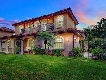 1411 HARMON AVENUE, Winter Park, FL, 32789,