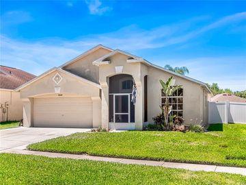 3149 CASTLE ROCK CIRCLE, Land O Lakes, FL, 34639,