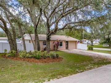 12051 WESTBAY AVENUE, New Port Richey, FL, 34654,
