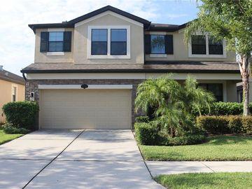 11712 ALBATROSS LN, Riverview, FL, 33569,