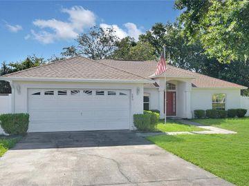 393 ED DOUGLAS ROAD, Groveland, FL, 34736,