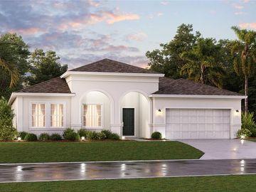 1775 CHERRY LAKE HAMMOCK LOOP, Groveland, FL, 34736,