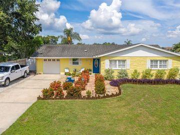 6004 TAMPA SHORES BOULEVARD, Tampa, FL, 33615,