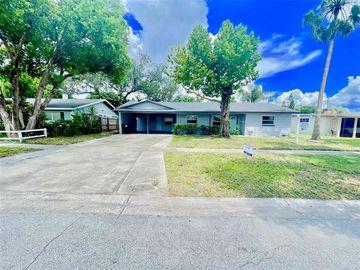 4309 BLONIGEN AVENUE, Orlando, FL, 32812,