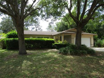 4101 N BAY HILLS BOULEVARD, Safety Harbor, FL, 34695,