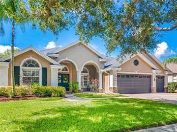 17723 CURRIE FORD DRIVE, Lutz, FL, 33558,