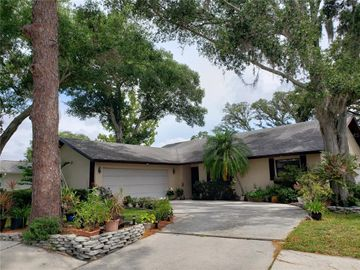 103 TANGLEWOOD COURT, Safety Harbor, FL, 34695,