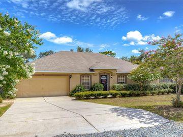 13085 HOUSE FINCH ROAD, Weeki Wachee, FL, 34614,