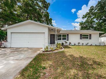 2489 WHITMAN STREET, Clearwater, FL, 33765,