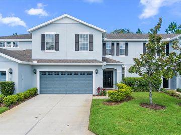 8111 HAMPTON VIEW LANE, Tampa, FL, 33647,