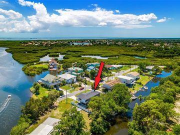 9107 BRUNSWICK LANE, Tampa, FL, 33615,