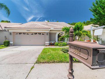3664 DARSTON STREET, Palm Harbor, FL, 34685,