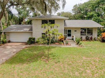 27212 ORANGE AVENUE, Yalaha, FL, 34797,