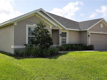 813 CHELSEA AVENUE, Fruitland Park, FL, 34731,