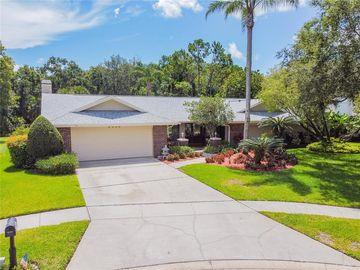 5004 CHATTAM LANE, Tampa, FL, 33624,