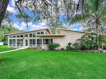 201 BANNOCKBURN AVENUE, Temple Terrace, FL, 33617,