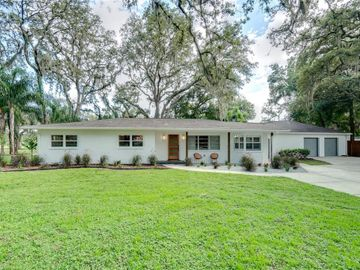 423 DRUID HILLS ROAD, Temple Terrace, FL, 33617,