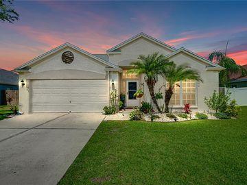 29912 MORNINGMIST DRIVE, Wesley Chapel, FL, 33543,