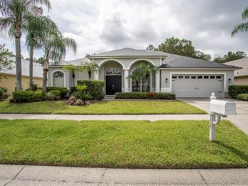 10015 CYPRESS SHADOW AVENUE, Tampa, FL, 33647,