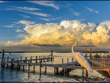 279 104TH AVENUE, Treasure Island, FL, 33706,