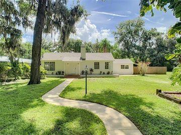 4375 LINDSEY LOOP, Dover, FL, 33527,