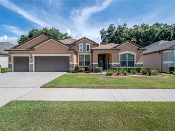 11336 AMERICAN HOLLY DRIVE, Riverview, FL, 33578,