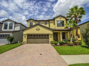 15208 FIJI ISLE PLACE, Tampa, FL, 33647,
