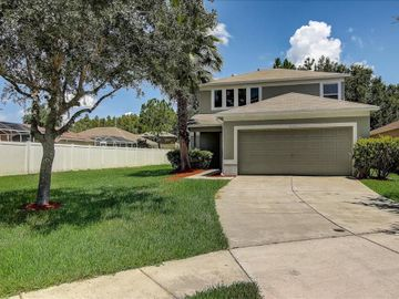 18243 PORTSIDE STREET, Tampa, FL, 33647,