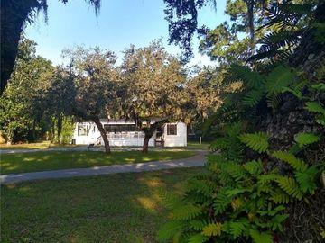14919 TERESA BOULEVARD, Hudson, FL, 34669,