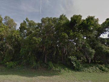 20611 SE 156TH STREET, Umatilla, FL, 32784,