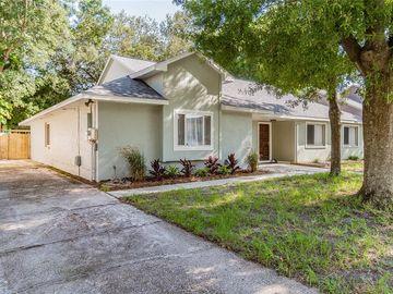 3416 JAMAIS WOOD WAY, Tampa, FL, 33618,