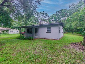 10411 N WOODMERE ROAD, Tampa, FL, 33617,