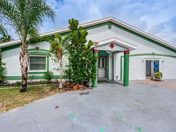 519 S LEVIS AVENUE, Tarpon Springs, FL, 34689,