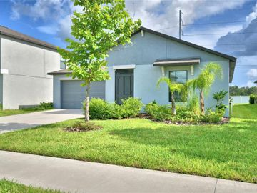 11214 LELAND GROVES DRIVE, Riverview, FL, 33579,
