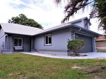 10405 CRESTO DELSOL CIRCLE, Orlando, FL, 32817,