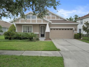 20002 HERITAGE POINT DRIVE, Tampa, FL, 33647,