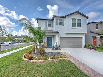 10231 WHITE LINEN AVENUE, Riverview, FL, 33578,
