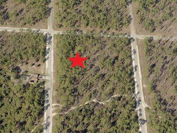 20 WELLS AVENUE, Lehigh Acres, FL, 33936,