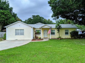 4413 W LAWN AVENUE, Tampa, FL, 33611,