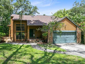 401 GROVELAND ROAD, Mount Dora, FL, 32757,