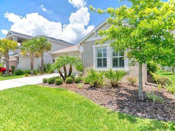 8035 CLEMENTINE LANE, Tampa, FL, 33625,