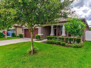 15359 STONE HOUSE DRIVE, Brooksville, FL, 34604,