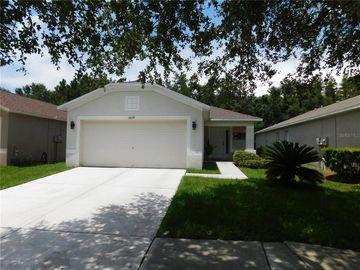 18239 PORTSIDE STREET, Tampa, FL, 33647,