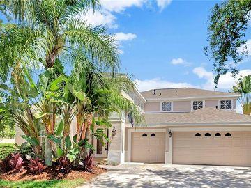 10208 QUAILS LANDING AVENUE, Tampa, FL, 33647,