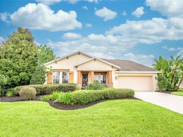 3521 FOXCHASE DRIVE, Clermont, FL, 34711,