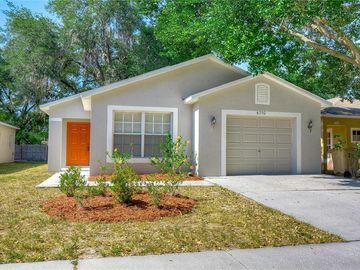 8730 MORRISON OAKS COURT, Temple Terrace, FL, 33637,