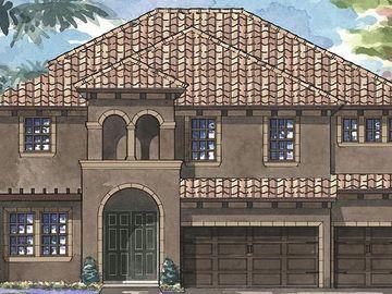 13722 OSPREY FERN LANE, Riverview, FL, 33569,