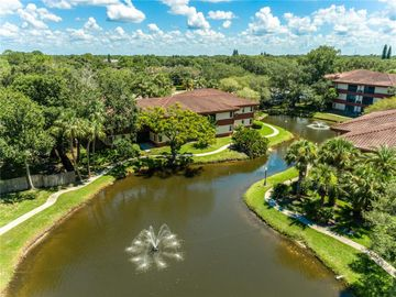 2650 COUNTRYSIDE BOULEVARD #D203, Clearwater, FL, 33761,
