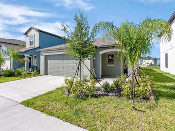 4315 UNBRIDLED SONG DRIVE, Ruskin, FL, 33573,