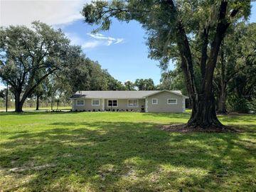 4633 CASTLEWOOD ROAD, Seffner, FL, 33584,